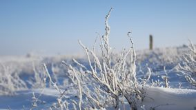 Erba congelata accanto al movimento di viaggio di inverno dell'itinerario della strada principale dell'auto archivi video