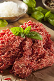 Erba cruda organica Fed Ground Beef Fotografia Stock Libera da Diritti