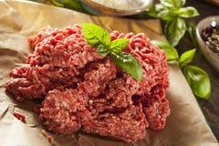 Erba cruda organica Fed Ground Beef fotografia stock