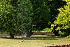 Erba d'innaffiatura dello spruzzatore del giardino Fotografie Stock
