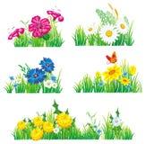 erba dei fiori Immagini Stock Libere da Diritti