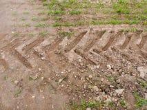 Erba del pavimento del percorso della sporcizia del fondo della pista del trattore della gomma della terra dell'azienda agricola Fotografia Stock Libera da Diritti