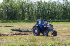 Erba del taglio di rastrellamento del trattore Falciatura del fieno Fotografia Stock Libera da Diritti