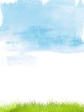 Erba dell'acquerello Fotografia Stock