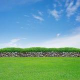 Erba della sorgente e parete di pietra Immagine Stock