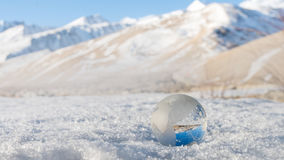 Erba della terra in Snowy Fotografia Stock