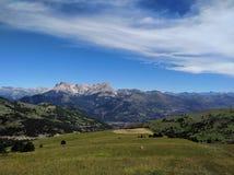 Erba di contrapposizione della montagna della nuvola Fotografie Stock Libere da Diritti