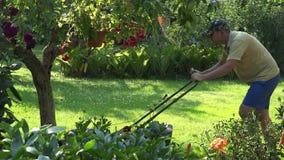 Erba di falciatura del giardiniere maschio fra gli alberi da frutto e del fiore nel cortile del giardino 4K archivi video