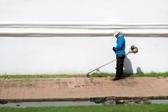 Erba di taglio dell'uomo del lavoratore della falciatrice da giardino Fotografia Stock Libera da Diritti