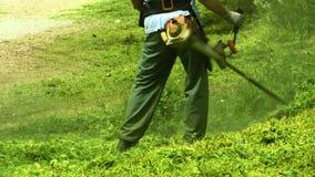 Erba di taglio dell'uomo del lavoratore della falciatrice da giardino nel campo verde, archivi video
