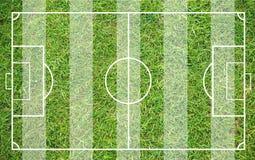Erba di un campo di calcio Fondo del campo di calcio o del campo di football americano Immagine Stock