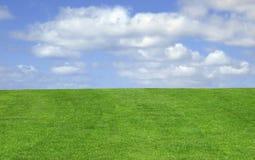 Erba e cielo Fotografia Stock Libera da Diritti