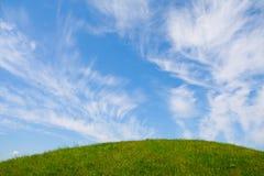 Erba e cielo blu Fotografia Stock Libera da Diritti