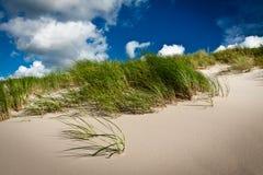 Erba e duna del mare con le nubi ed il cielo blu Immagini Stock Libere da Diritti