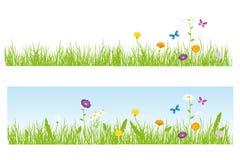 Erba e fiori Immagini Stock