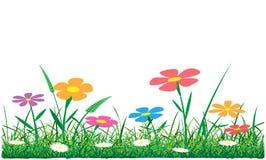 Erba e fiori Immagini Stock Libere da Diritti