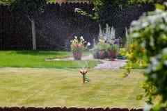 Erba e fiori d'innaffiatura dello spruzzatore del giardino Fotografia Stock Libera da Diritti