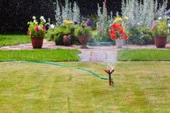 Erba e fiori d'innaffiatura dello spruzzatore del giardino Fotografia Stock