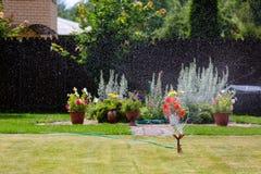 Erba e fiori d'innaffiatura dello spruzzatore del giardino Immagine Stock Libera da Diritti
