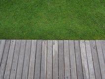 Erba e percorso di legno Immagine Stock