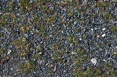 L'erba lapida la struttura Fotografia Stock