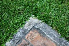 Erba e pietra a terra posteriori Fotografia Stock Libera da Diritti