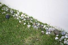 Erba e roccia con la parete bianca Immagini Stock