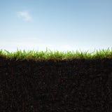 Erba e terreno immagine stock