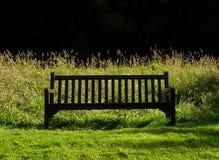 Erba e un sedile in Northumberland fotografia stock libera da diritti