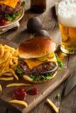 Erba Fed Bison Hamburger immagine stock libera da diritti