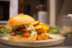 Erba Fed Bison Hamburger con il cheddar del formaggio e della lattuga immagine stock libera da diritti