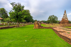 Erba fertile verde in Wat Chaiwatthanaram nella città di Ayutthaya fotografie stock