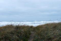 Erba lunga su una spiaggia davanti ad un oceano tempestoso con un percorso Immagine Stock