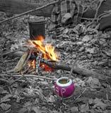 Erba mate intorno a fuoco di accampamento Immagini Stock Libere da Diritti