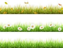 Erba nelle stagioni differenti fissate Fotografie Stock