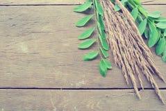 Erba secca e foglie verdi sulla tavola di legno rustica; retro/annata Fotografia Stock