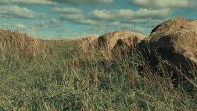Erba sotto vento e rocce Erba sotto vento e rocce Scena 4 archivi video