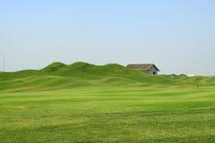 Erba sul terreno da golf Immagine Stock Libera da Diritti