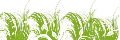 Erba verde Illustrazione di Stock