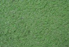 Erba verde artificiale Fotografia Stock
