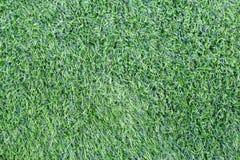 Erba verde artificiale Fotografie Stock Libere da Diritti