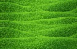 Erba verde che cresce sulle colline con fondo bianco Fotografia Stock