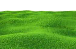 Erba verde che cresce sulle colline con fondo bianco Fotografia Stock Libera da Diritti
