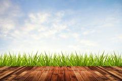Erba verde con il pavimento di legno e del cielo Immagini Stock