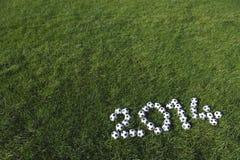 Erba verde 2014 dei palloni da calcio del messaggio di calcio Immagini Stock