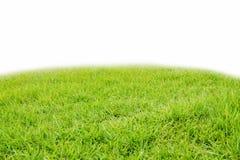 erba verde del pendio del monticello Fotografia Stock