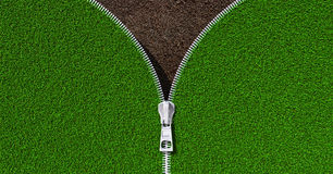 Erba verde del prato aperto dello zip Fotografia Stock Libera da Diritti