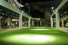 Erba verde dell'interno Immagine Stock