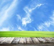 Erba verde della molla fresca con cielo blu ed il pavimento di legno Fotografia Stock