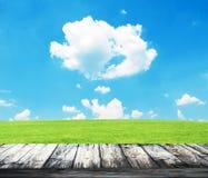 Erba verde della molla fresca con cielo blu ed il pavimento di legno Fotografia Stock Libera da Diritti